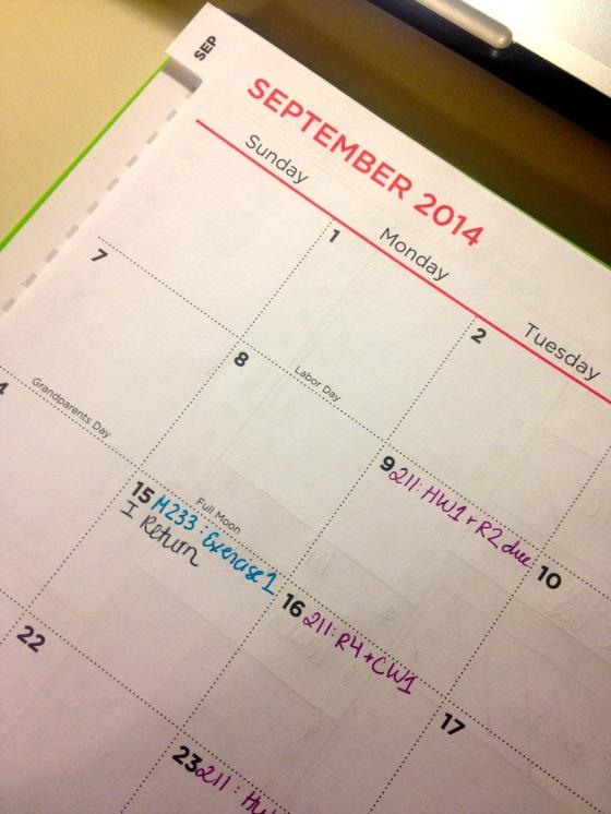 My agenda